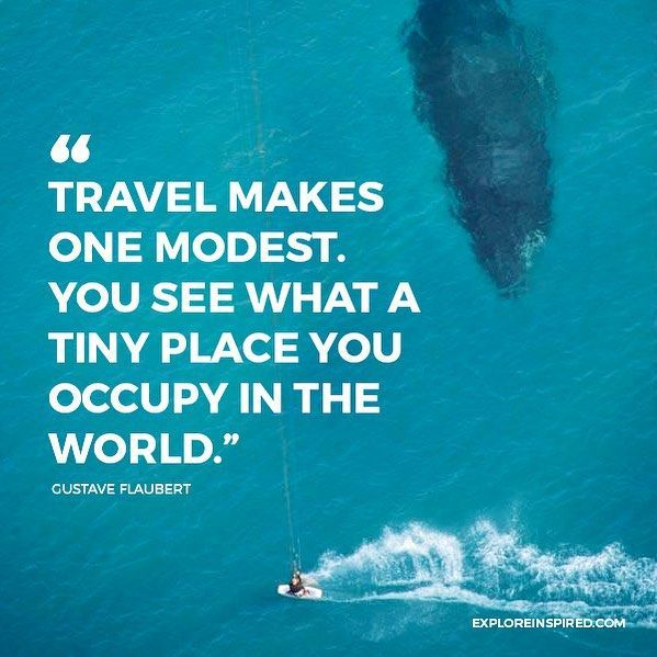 14261e96abe7eb55407618de75bea038--travel-quotes-whales