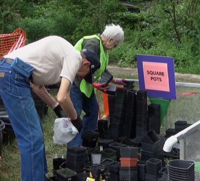 Berta John sorting sq pots