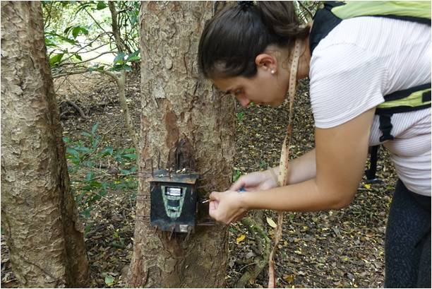 02. Filipa Mouga checking a camera trap
