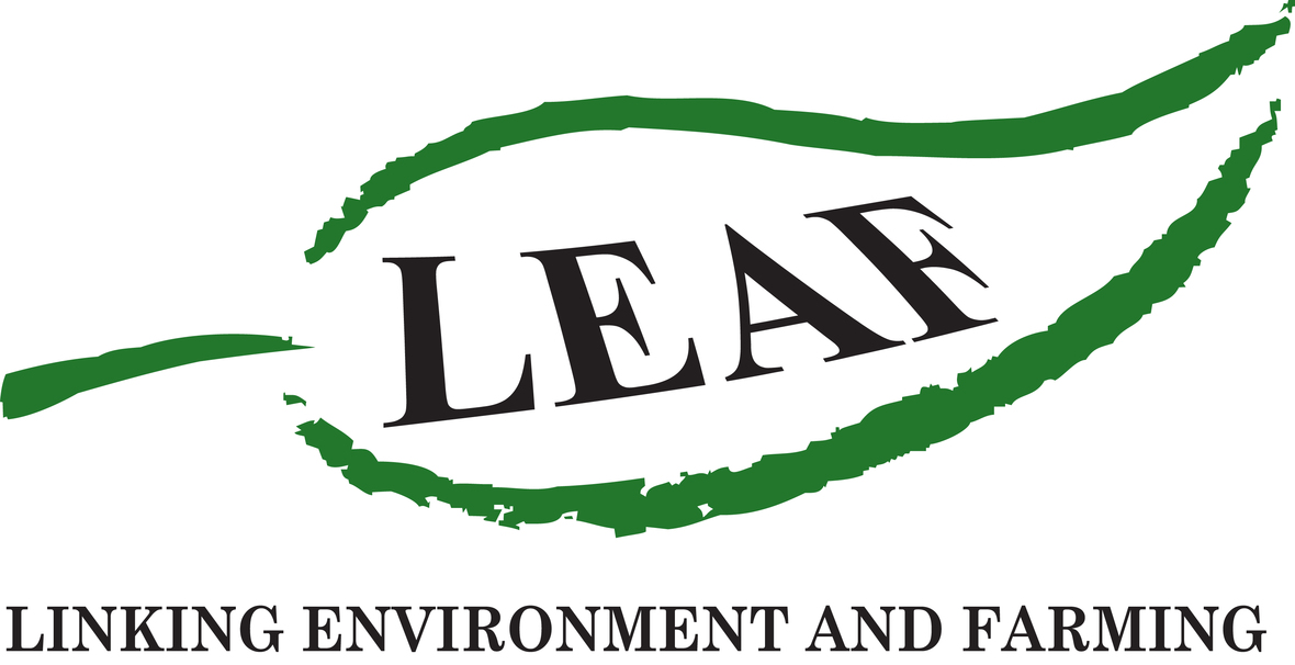 LEAF LOGO with text