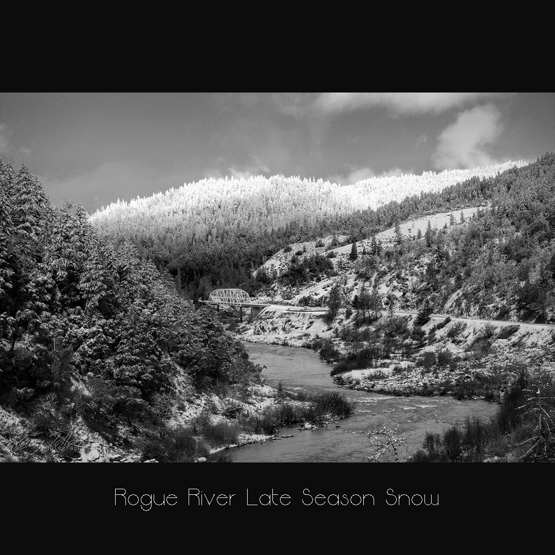 rogue-late-snow