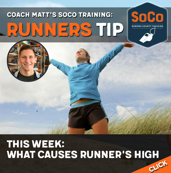 matthew runners tip high
