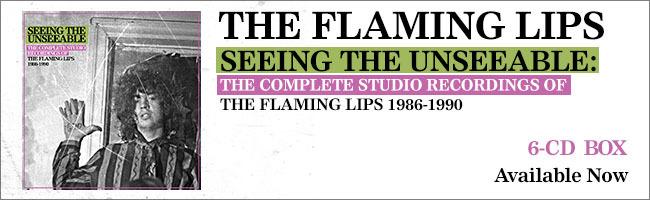 flaming lips stu banners indie static 650x200