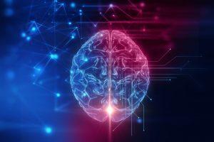 brain-300x200