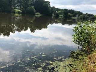 lake Aug 2018