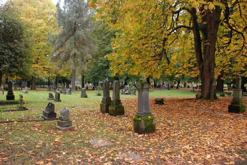lonefir cemetery fall