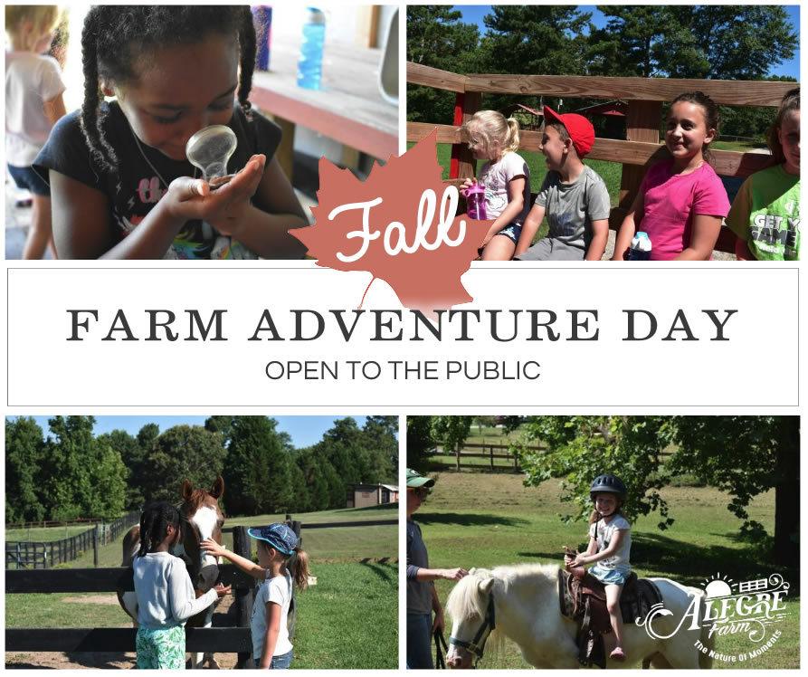 farm-adventure-day-collage