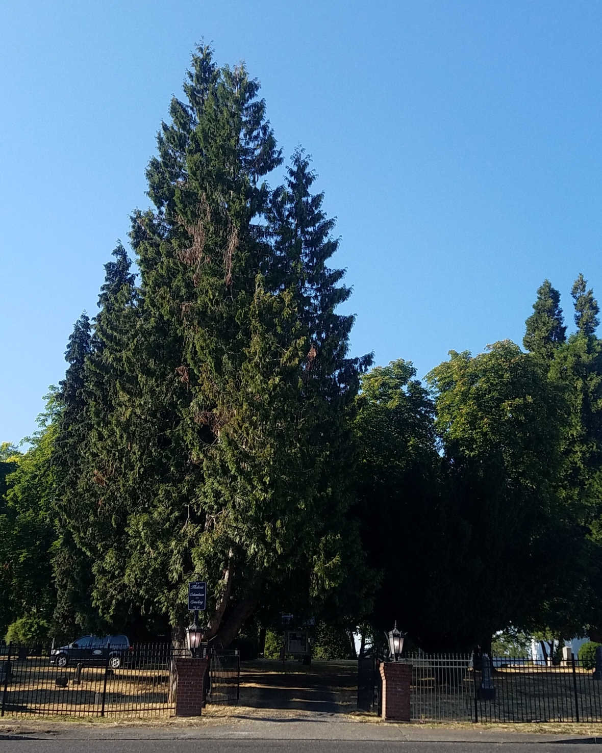 Long Fir Cemetery