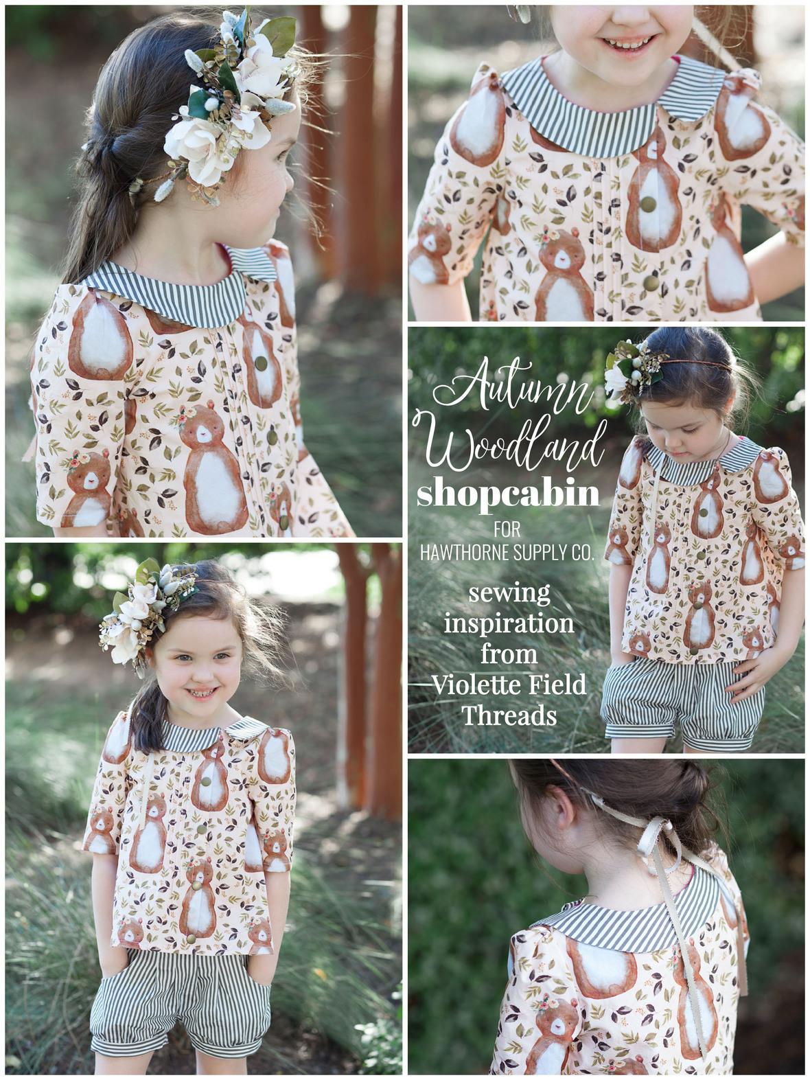 Ashley Cowan Autumn Woodland Shopcabin for Hawthorne Supply Co 2