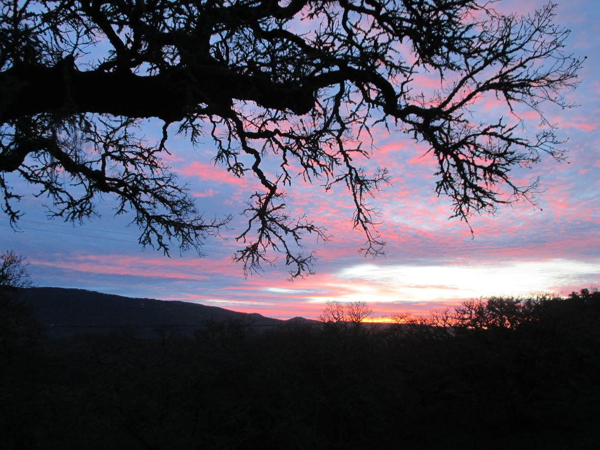 Autumn Sunrise - Glen Ellen CA
