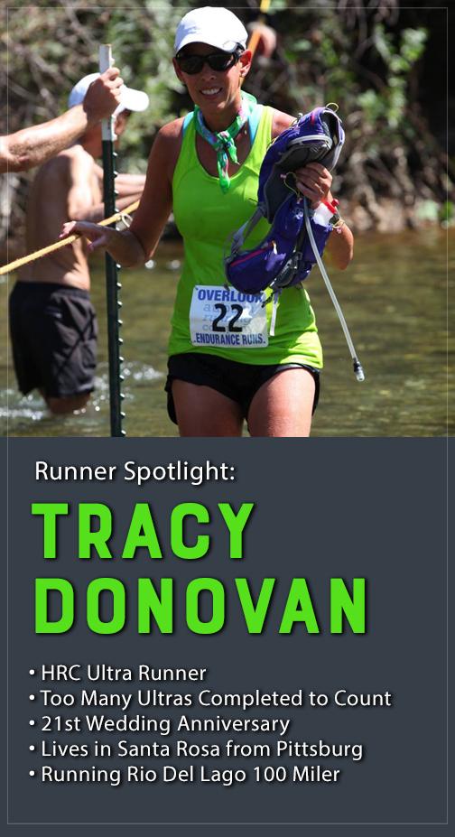 tracey donovan spotlight