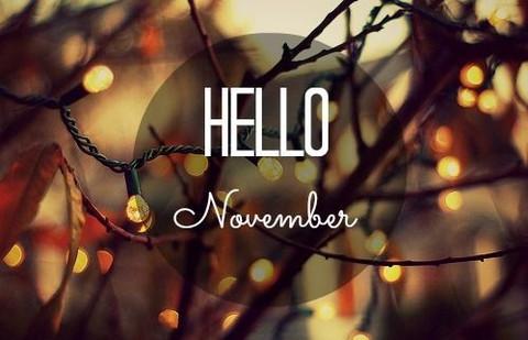 hello-november-n-12 large