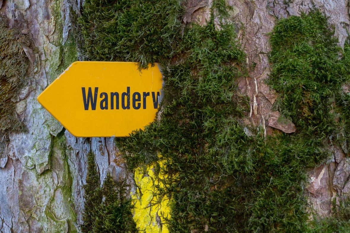 trail-2263784 1280