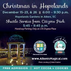 christmas-in-hopelands