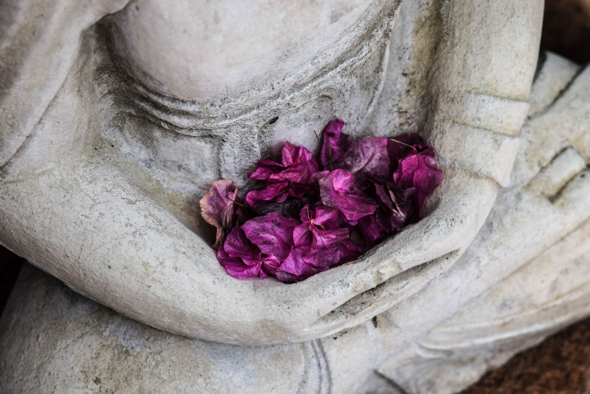 Judith Kramer Meditation Pic