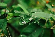 rain-weekend1