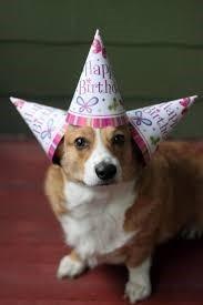 birthday courtney