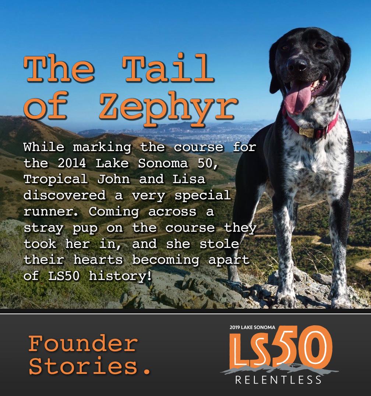LS50 zephyr
