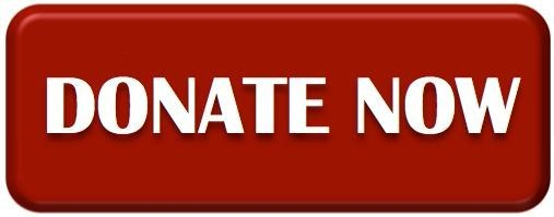 Donate-Now-Button 1