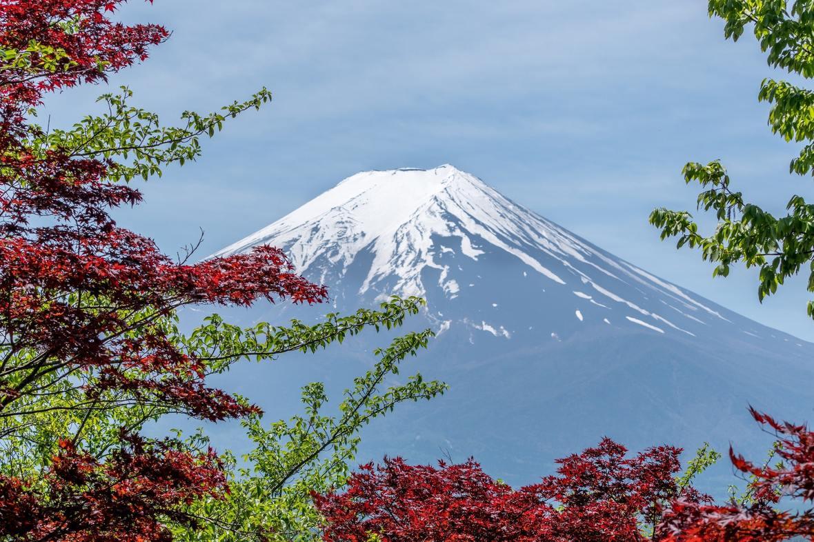 asia-autumn-beautiful-248195