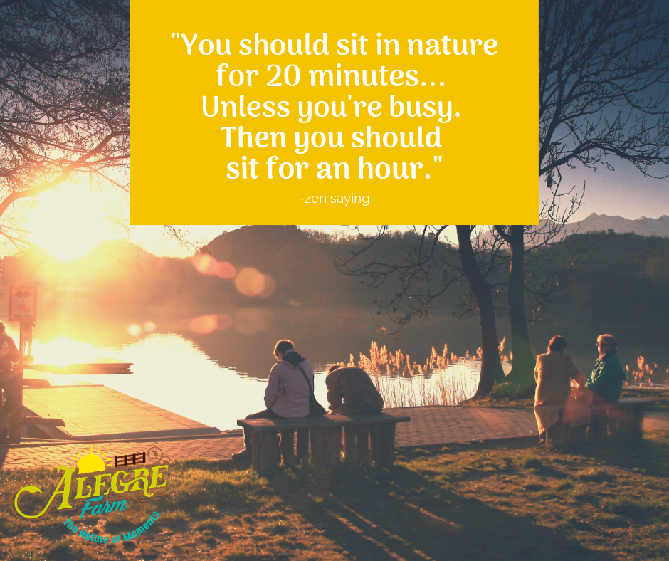 You should sit in nature for 20 minutes... Unless you re busy then you should sit for an hour