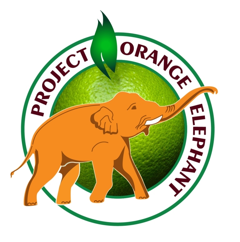 LOGO ORANGE Very Final