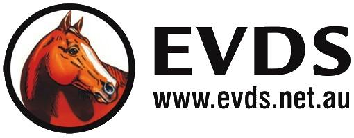 EVDS logo website trans