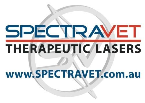 New SVET Therapeutic Lasers Logo com au 002