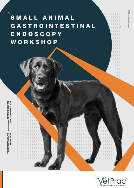 Small Animal Gastrointestinal Endoscopy Workshop