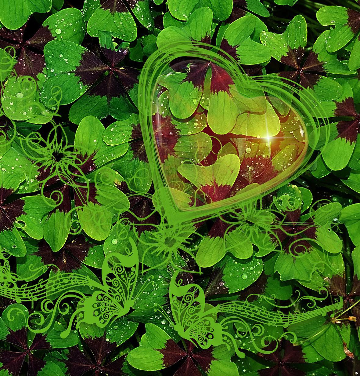 luck-2758147 1920crop