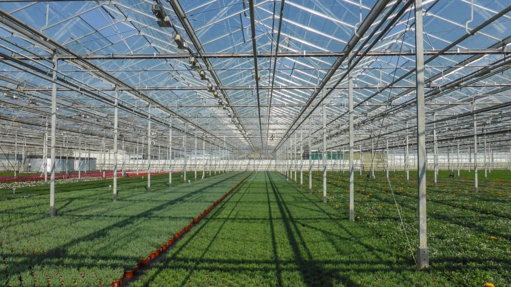 NAFTC TR greenhouse