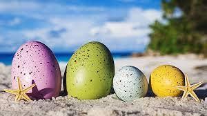 eggs beach