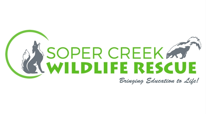 soperwildlife