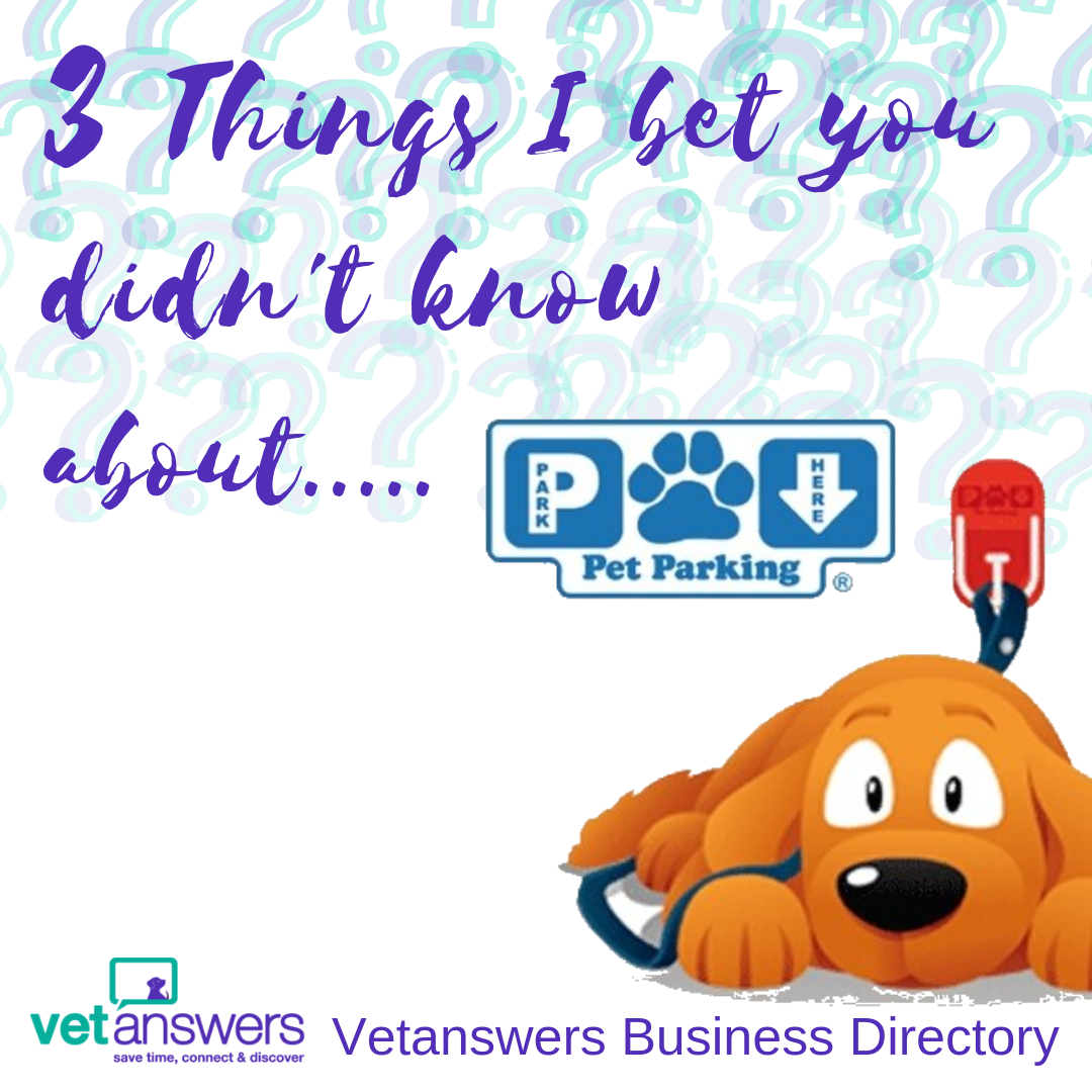 3 Things I bet you didn t know about..... Pet Parking
