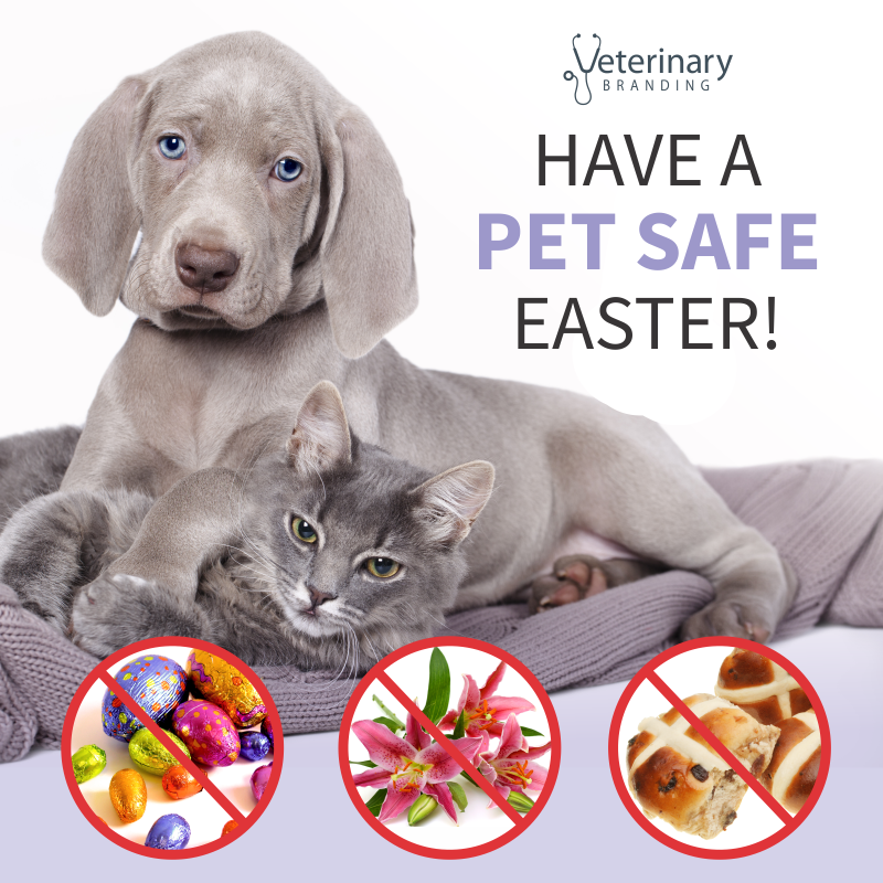 2017-have-a-pet-safe-easter-veterinary-branding-1 1