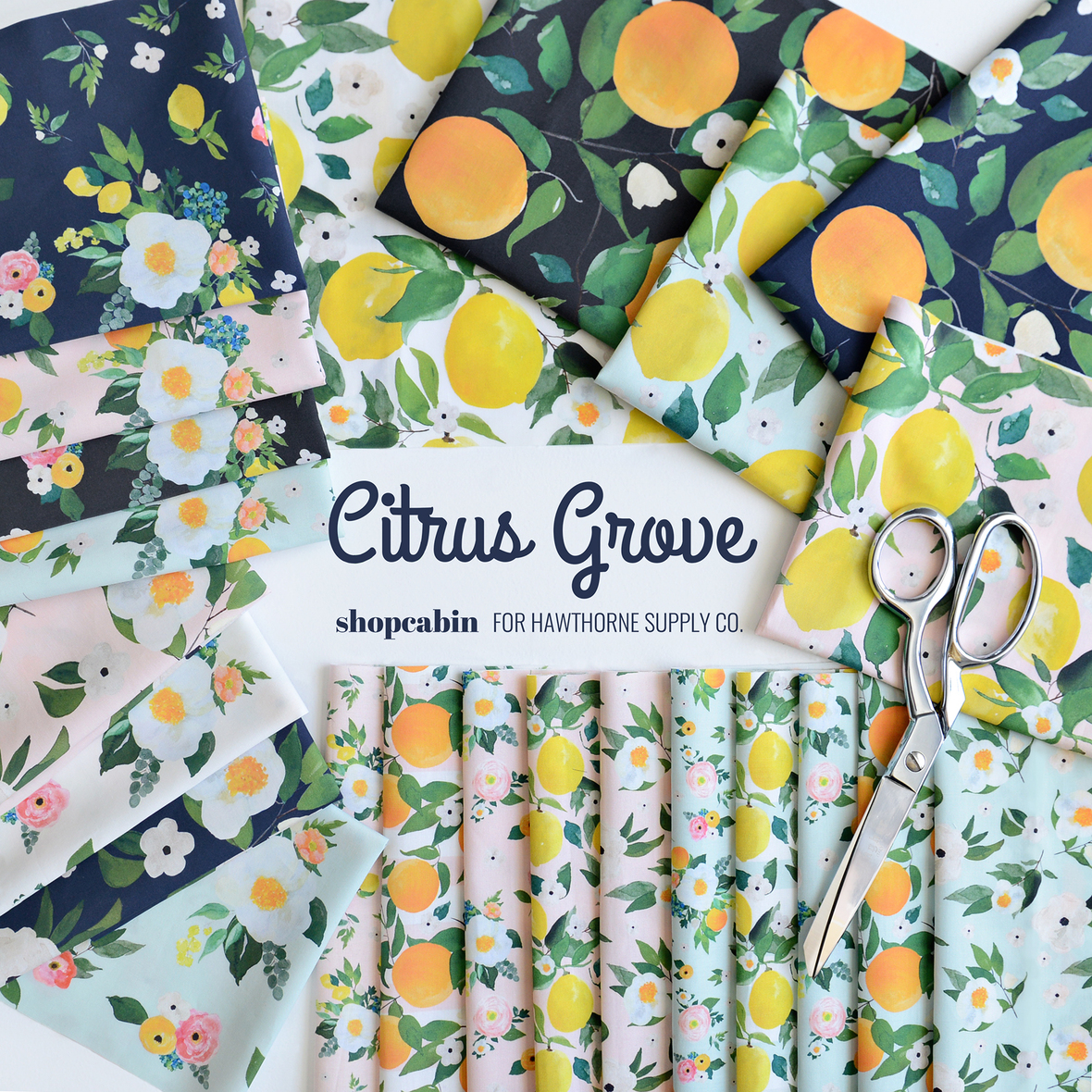 Shopcabin Citrus Grove Collection for Hawthorne Supply Co 1