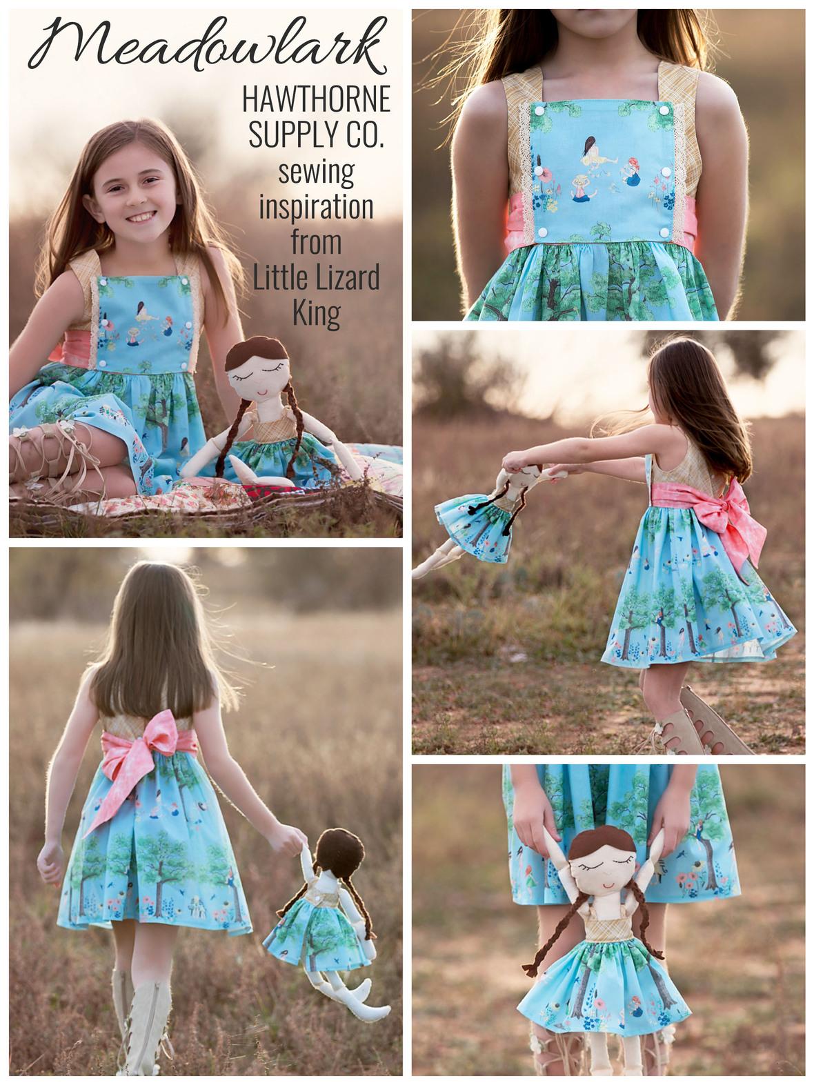 Meadowlark Fabric and Little Lizard King Dress