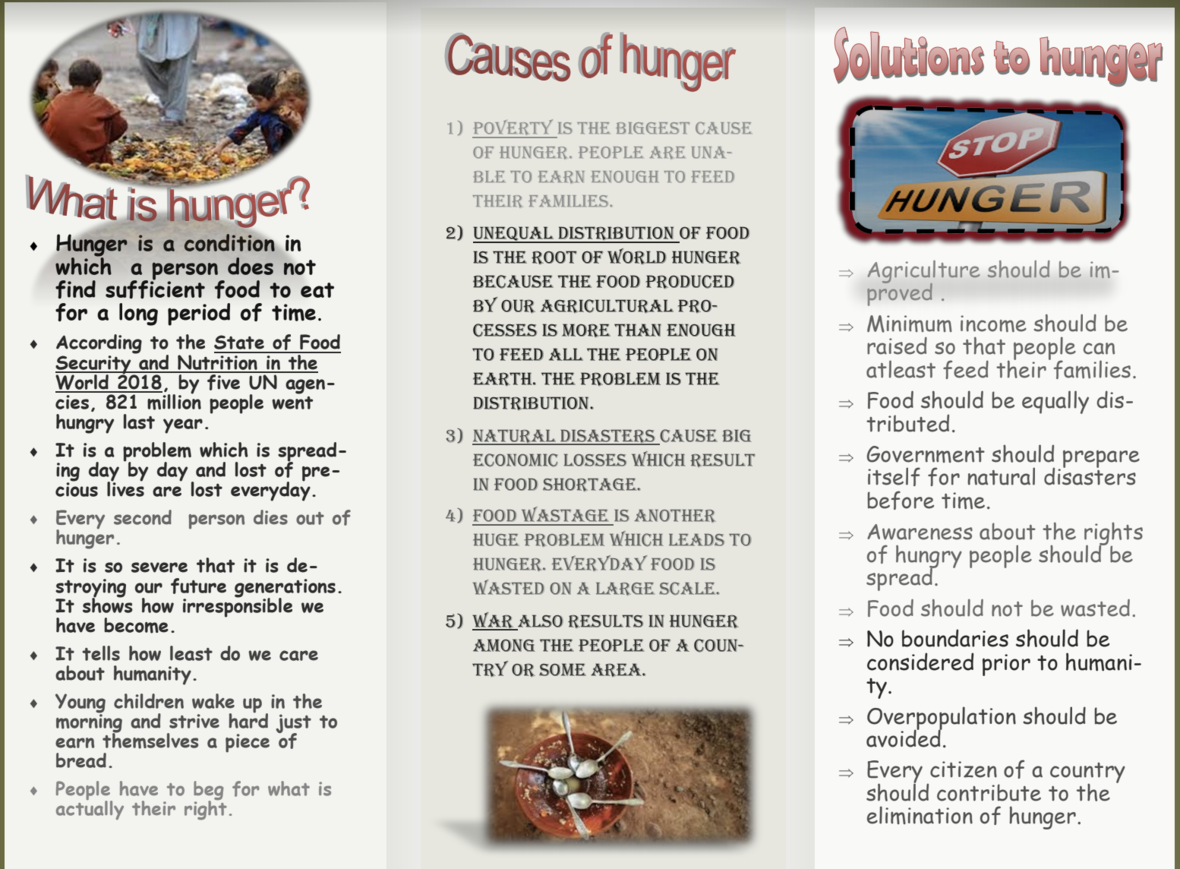 Finding Solutions to Hunger - Student Voices 2
