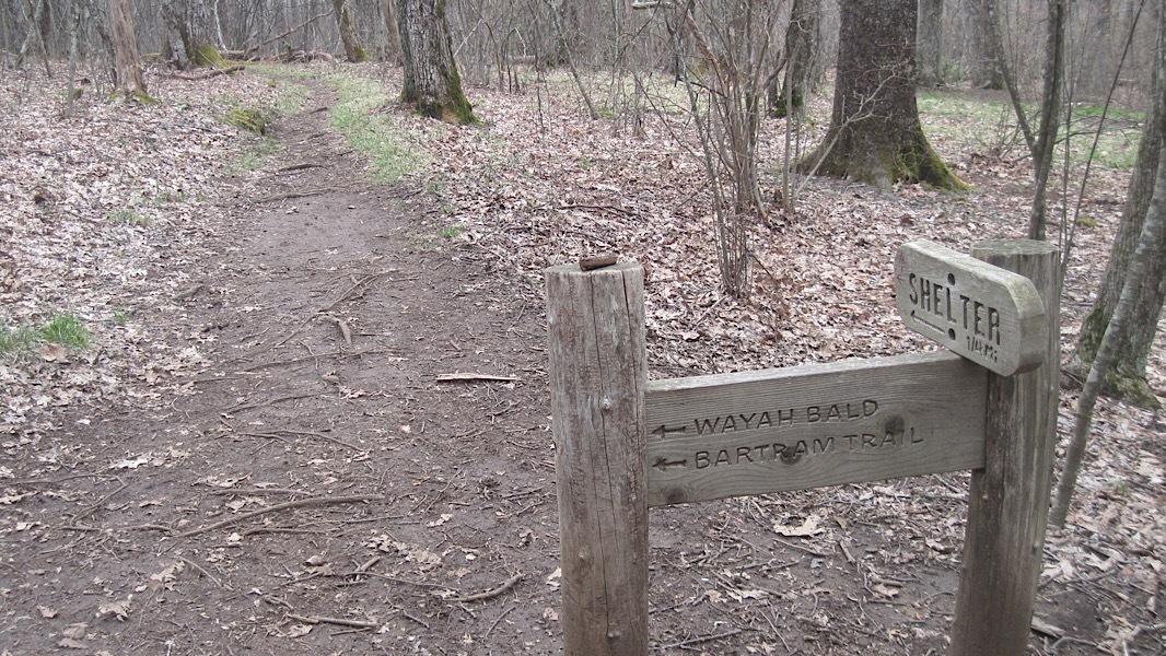 Bartram Trails 3