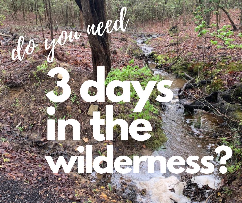 3 days in the wilderness