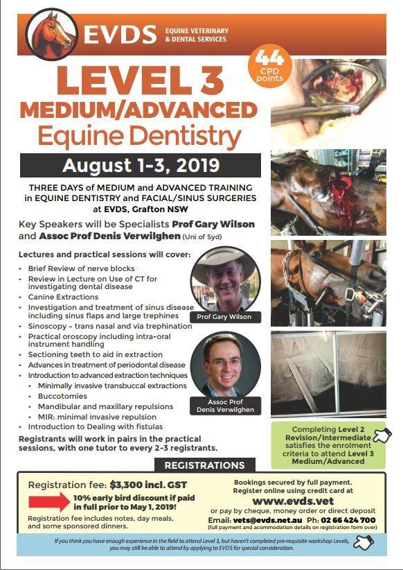 EVDS Level 3 Medium Advanced Equine Dentistry Workshop