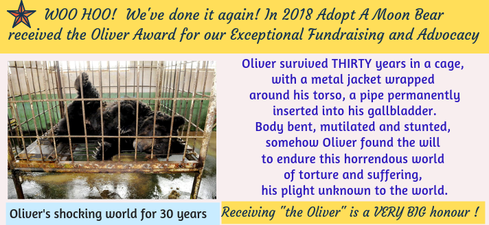 Oliver Award Annual Report 2018-2
