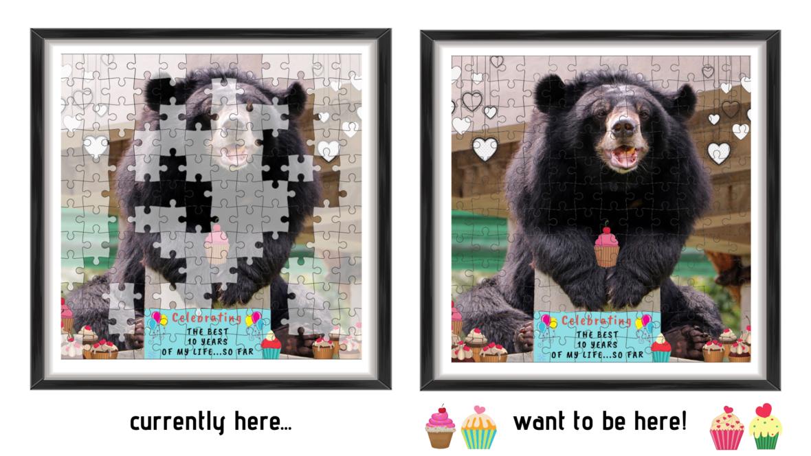 My 2019 puzzle