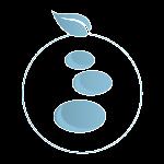 Twe chiropractic icon 300x300 150x150